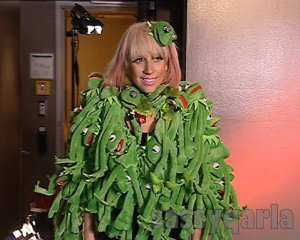 Lady Gaga's frog outfit