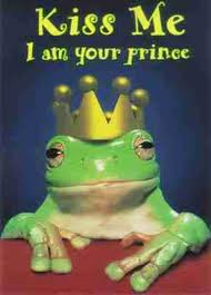 Frog prince - kiss me